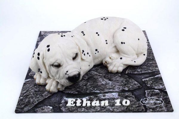 Dalmatian-Puppy-Dog-Cake