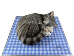 Grey-Cat-Cake