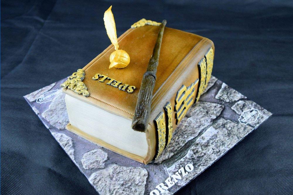Harry Potter Cake 2