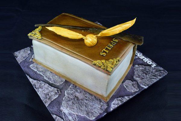 Harry Potter Cake 3