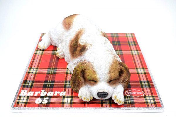 Spaniel-Dog-Cake