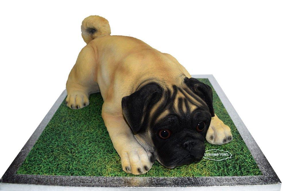 pug-dog-cake